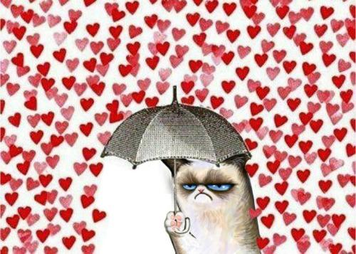 valentine2527s2bday2b780